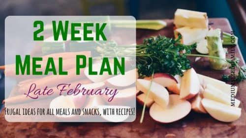 2 Week Meal Plan for Late February