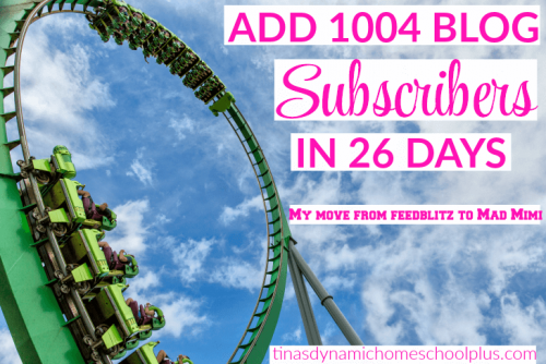 ADD 1004 BLOG SUBSCRIBERS IN 26 DAYS – FROM FEEDBLITZ TO MAD MIMI