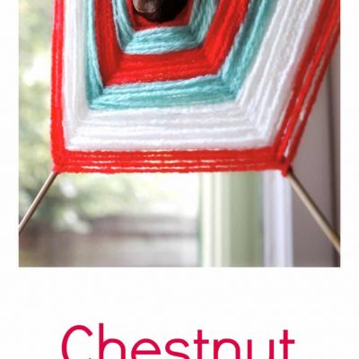 Chestnut – Spider Web Weaving