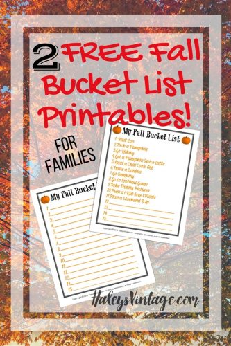 Are you ready for Fall? My list of 11 Fall family activities will make you excited for fall to get here & make for a memorable season. Plus, 2 FREE Fall Bucket List Printables!
