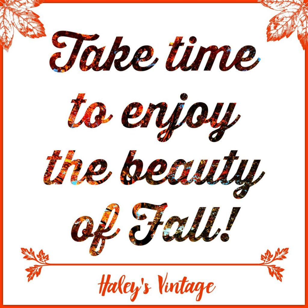 Quote: Take time to enjoy the beauty of Fall! Haley's Vintage