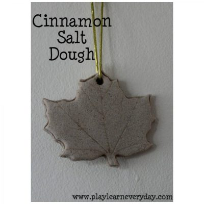 Cinnamon Salt Dough