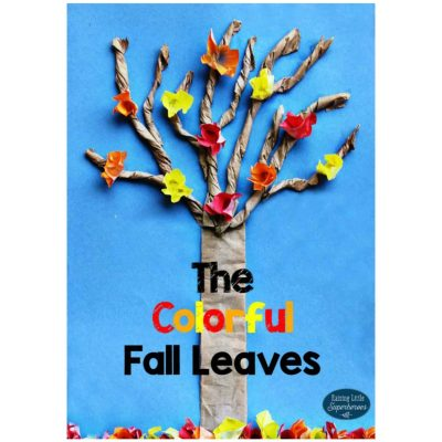 The Colorful Fall Leaves