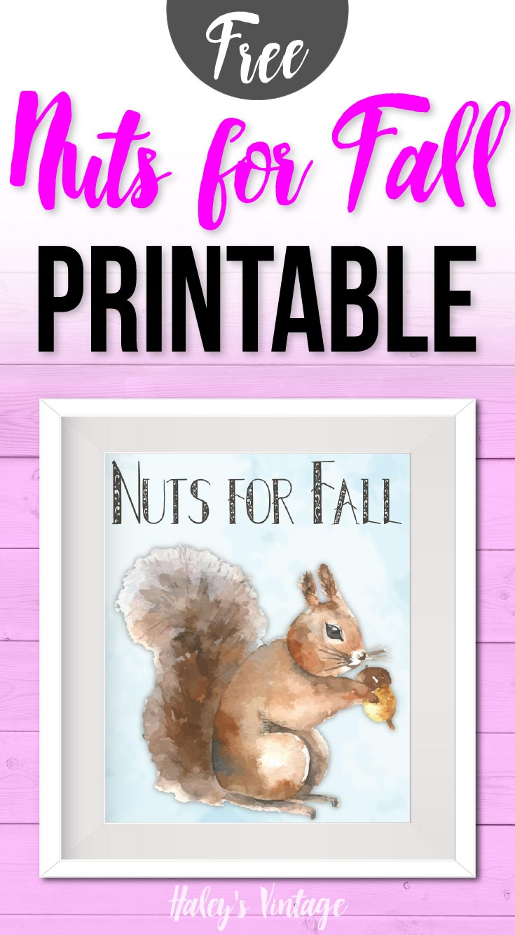 My FREE Nuts for Fall Printable will make you even nuttier for fall! As part of my weekly printable series, you will love decorating with today's printable. #fall #freeprintable #happyfall